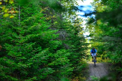 mountain-bike-steven-gnam